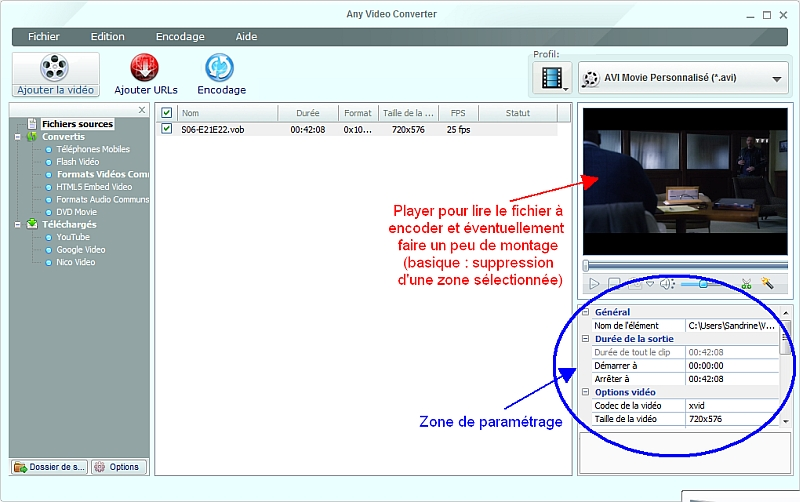 Any Video Converter - Zone de paramètrage