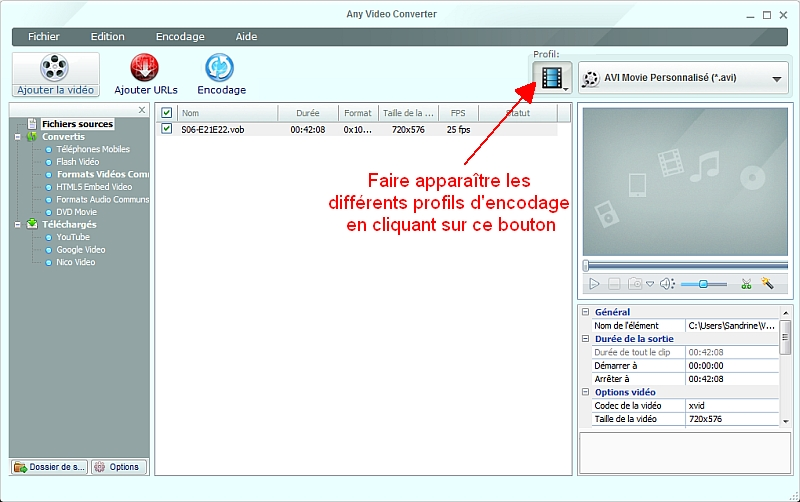 Any Video Converter - Choisir le profil d'encodage